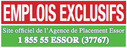 AGENCE_DE_PLACEMENT_ESSOR_2012.png